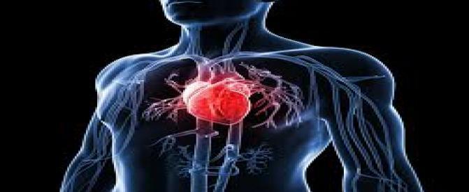 چه ارتباطی بین بیماریهای قلبی و سایر بیماریها وجود دارد ؟(2)
