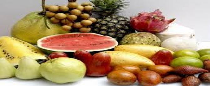 غذاهای چربی سوز کدامند ؟(2)