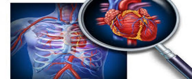 چه کسانی در معرض ابتلا به بیماریهای قلبی هستند ؟