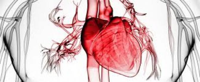 چگونه با نارسایی قلبی کنار بیاییم (2) ؟
