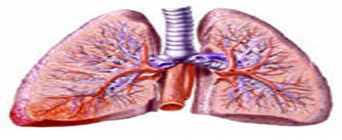 پنومونی (ذات الریه ، سینه پهلو) و علل و علائم آن