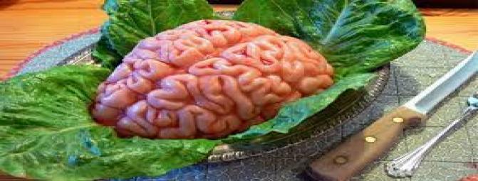 ابرغذاهای مؤثر در افزایش هوش (2)