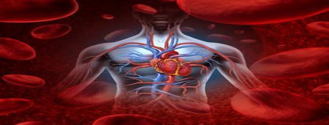عجیب ترین محرکهای بیماریهای قلبی کدامند ؟(2)