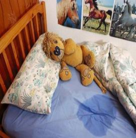 آیا شب ادراری در بین کودکان شایع است؟