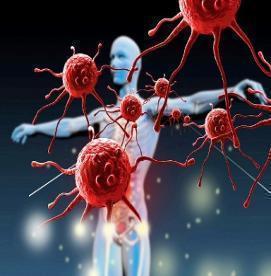 تقویت کننده ها و تخریب کننده های سیستم ایمنی بدن