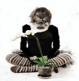 باغبانی بدون برانگیختن علایم آلرژی