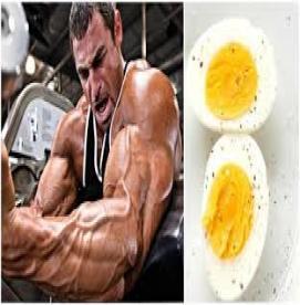مصرف کدام مواد غذایی  باعث افزایش تستوسترون می شود ؟