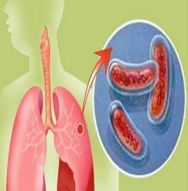 آیا می دانید برخی بیماری ها موجب تشدید سل می شود ؟ !
