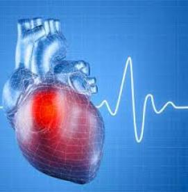 چگونه از قلبمان در برابر گرما حفاظت کنیم ؟