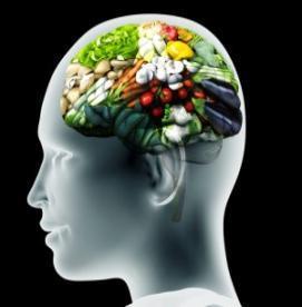 مغزی متمرکز با تغذیه ایی هدفمند